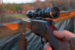rifle-and-scope-1-840859-m