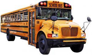 school-bus-910927-m
