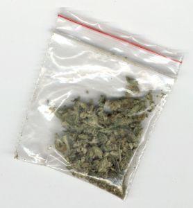 dutch-weed-403-m1