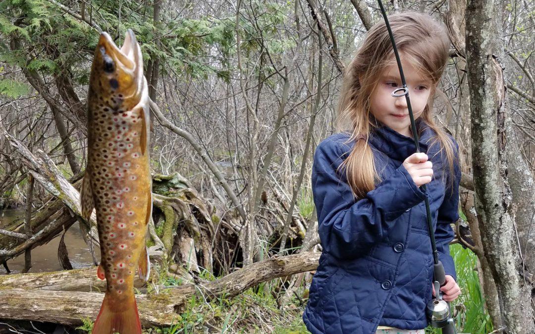 Creek Fishing: Small streams can offer big rewards