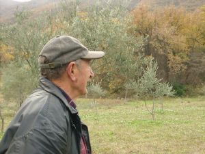 grandpa-in-the-fields-148180-m
