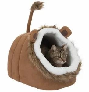 Miglior cuccia per gatti quale scegliere  MicioGattoit
