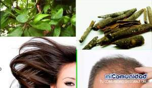 Loción capilar casera para la caída de cabello