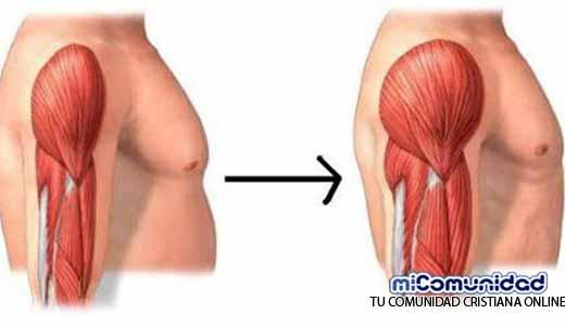 Un Nuevo Estudio Asegura Que Hay Un Método Para Aumentar Masa Muscular Sin Mucho Esfuerzo