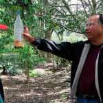 Experto de la OIEA visitó ecuador para fortalecer la técnica del insecto estéril en áreas hortofrutícolas.