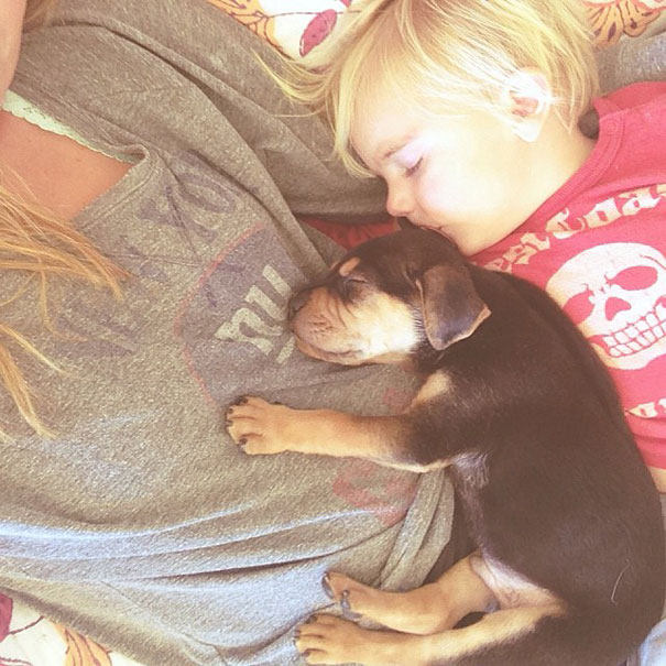 Theo-Beau-toddler-naps-with-puppy-theo-and-beau-1
