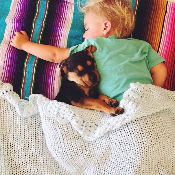 Theo-Beau-toddler-naps-with-puppy-theo-and-beau-11