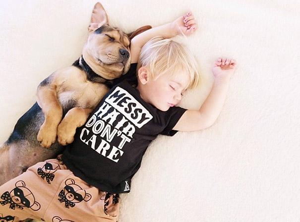 Theo-Beau-toddler-naps-with-puppy-theo-and-beau-2-4