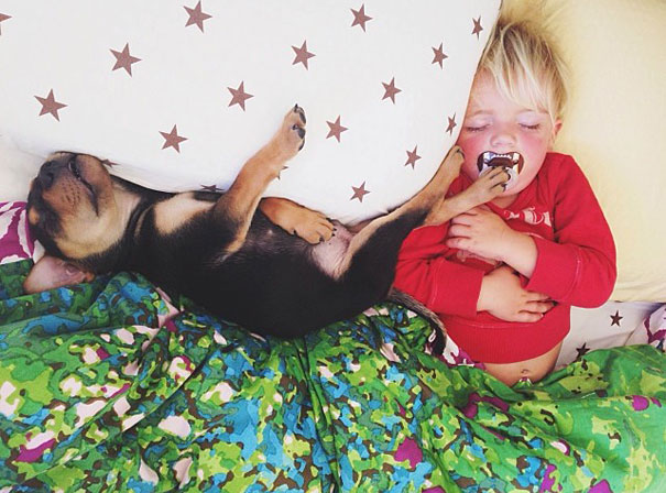 Theo-Beau-toddler-naps-with-puppy-theo-and-beau-2