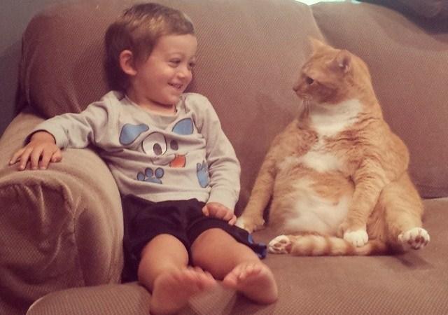 Gato adoptado se convierte en el guardián inseparable de este pequeño.