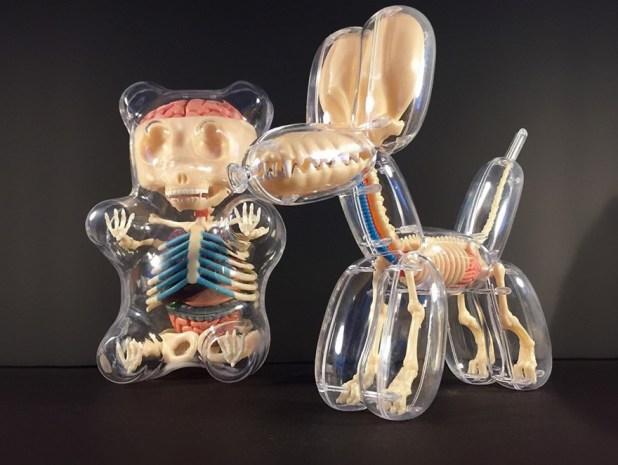globos-anatomia-animales-jason-freeny-4