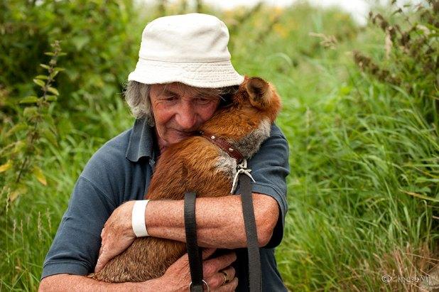 zorros-rescatados-patsy-gibbons-irlanda-3