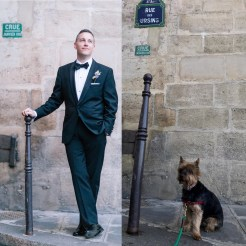 Dog-Wedding-1