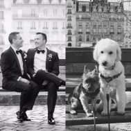 Dog-Wedding-6
