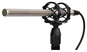 Shotgun microphones are the best mics for video cameras