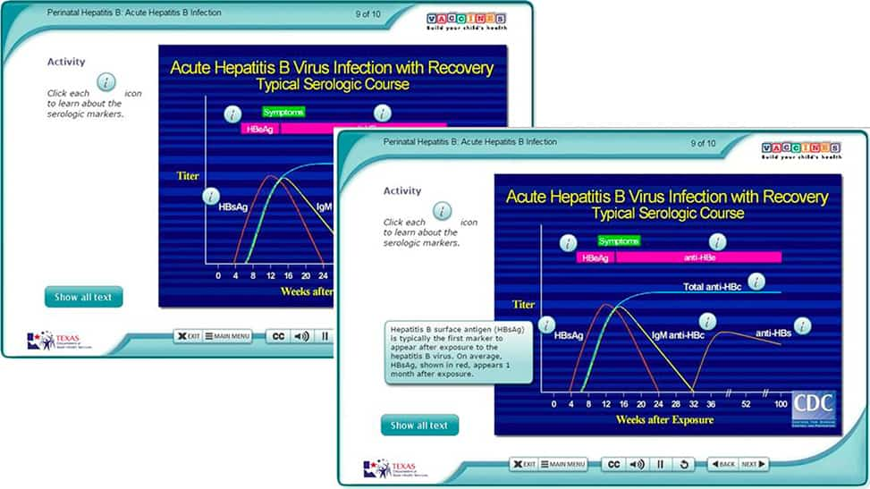 "Two images of a single elearning course screen on Acute Hepatitis B Virus Infection chart. One screen overlaps the other. Both show a graph with ""information"" icons, or markers, on various sections. The top image displays an explanatory bubble for HBsAG."