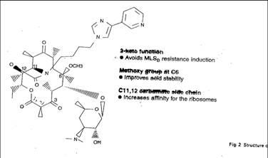 Schema sul meccanismo d'azione degli antibiotici.