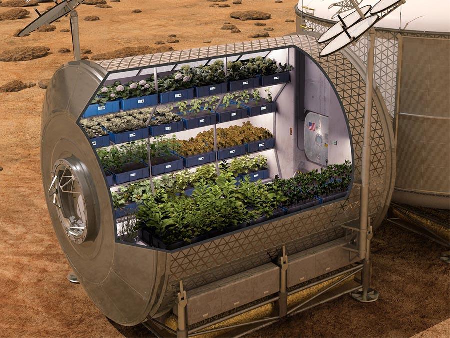 Sistemi di coltivazione nelle basi spaziali