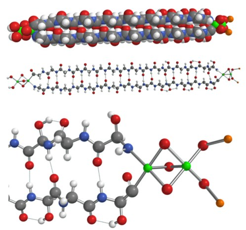 Struttura dell'emolitina. In bianco vengono rappresentati gli atomi di idrogeno, in arancione il litio, in grigio il carbonio, in rosso l'ossigeno, in blu l'azoto e in verde il ferro. È possibile osservare la presenza alle estremità la presenza di litio, ossigeno e ferro, mentre al centro troviamo catene peptidiche anti-parallele di glicina.