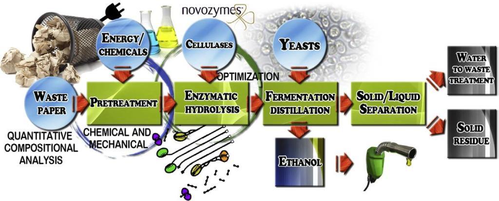 Rappresentazione schematica del processo di bioraffineria per la conversione della carta di scarto in biocarburanti.