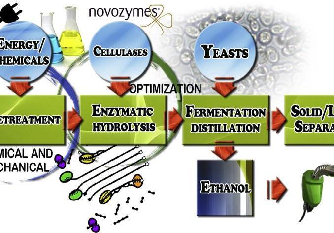 Carta non riciclabile in biocarburanti
