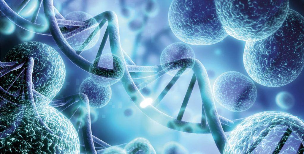 Malattia di Crhon e microbioma