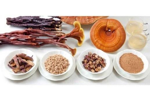 I funghi medicinali piu´ utilizzati nella micoterapia sono circa 12 specie.