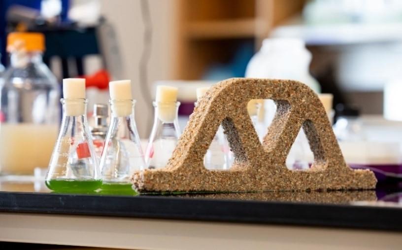 BIO-mattone realizzato con una miscela di sabbia, acqua e cianobatteri del genere Synechococcus; questi microrganismi ricavano energia dalla luce solare ed utilizzano anidride carbonica (CO2) per la sintesi di molecole organiche. In presenza di CO2 e di una fonte di calcio essi sono in grado di precipitare carbonati. Fonte: buildingcue.it