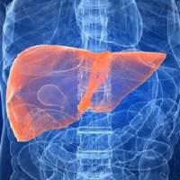 La cirrosi potrebbe essere diagnosticata mediante l'analisi del microbioma