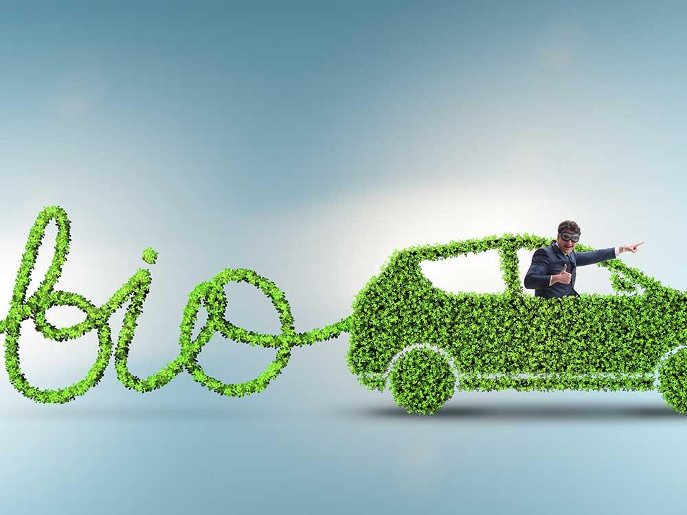 Purificazione del biogas