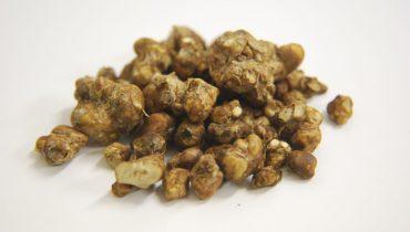 A Safe and Natural Source of Psilocybin