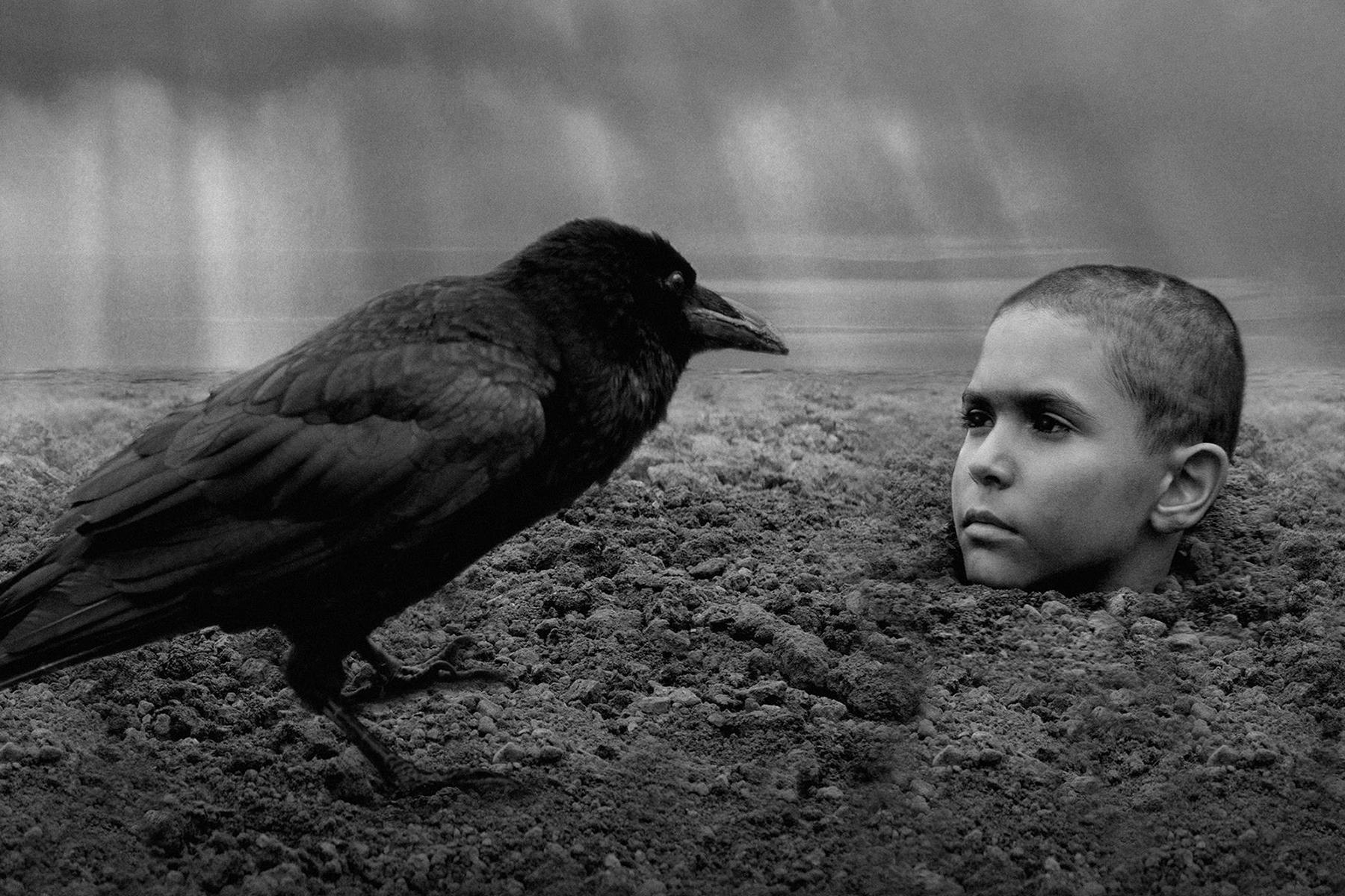 Festivales: crítica de «The Painted Bird», de Václav Marhoul