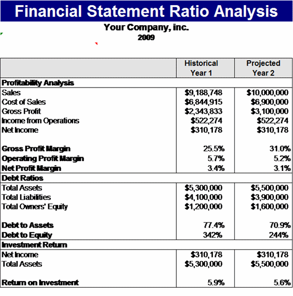 financial ratios analysis template