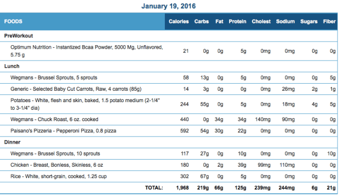 Mike's Diet Journal Entry for January 19 2016