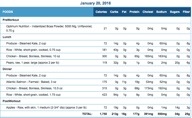 Mike's Diet Journal Entry for January 20 2016