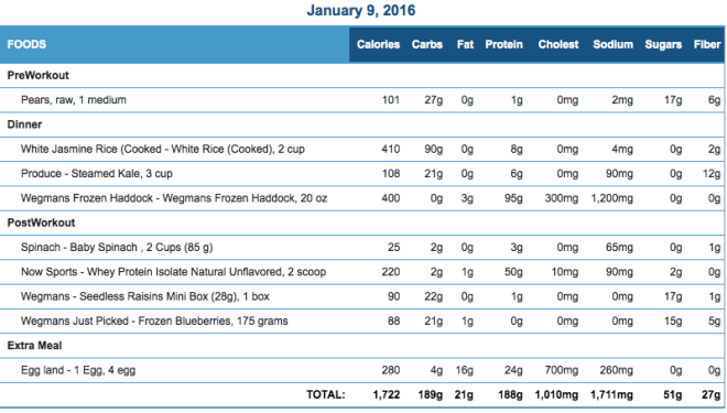Mike's Diet Journal Entry for January 9 2016