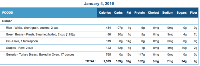 Mike's Diet Journal Entry for January 4 2016