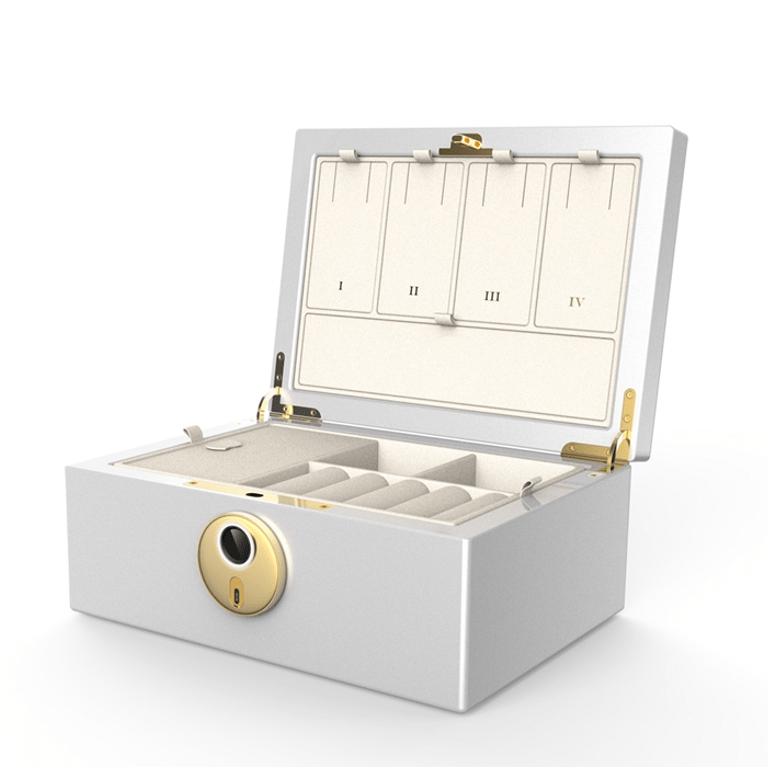 MFB-1200 Biometrics Fingerprint Jewelry Safe Box & Organizer · Fingerprint Jewelry Chest· Fingerprint Jewelry Case · Fingerprint Jewelry Storage & Organization
