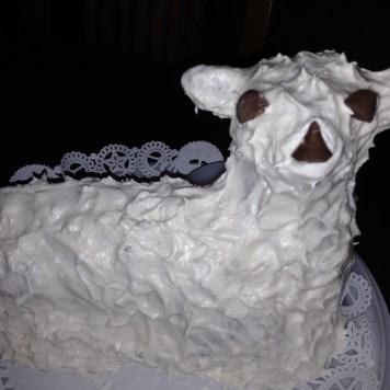 Elle's Lamb