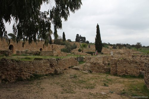 Ruins of the ancient city of Carthage, Tunis [Jehan Alfarra/Middle East Monitor]