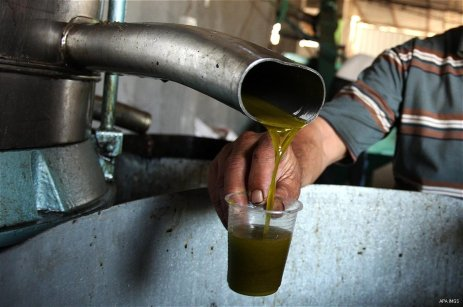 A Palestinian man pours newly-made olive oil into a plastic container at an olive press in Gaza City October 6, 2016. [Ashraf Amra/ APA Images]