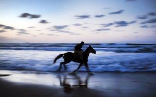 GAZA CITY, GAZA - NOVEMBER 17: A Palestinian man rides a horse at the Gaza beach on November 17, 2016 in Gaza City, Gaza. ( Ali Jadallah - Anadolu Agency )