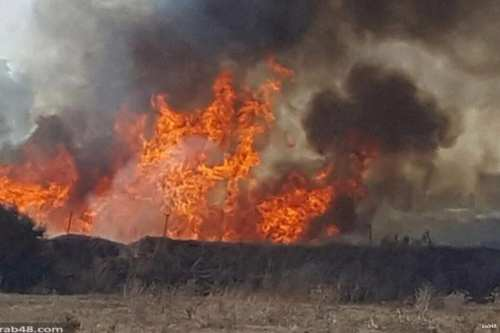 Image of the violent fire that continues to rage around Israel [arab48]