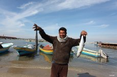GAZA CITY, GAZA- Something smells fishy