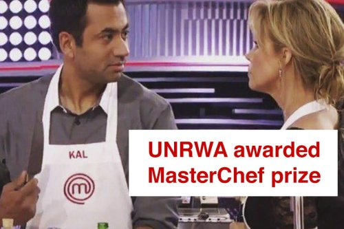 US actor Kal Penn donates MasterChef prize to Palestinian refugees