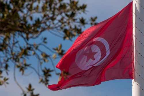 Tunisian flag raised up at Belvedere Park in Tunis on 20 March, 2017 [Amine Landoulsi/Anadolu Agency]