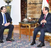 Egypt's medical aid diplomacy extends to Lebanon