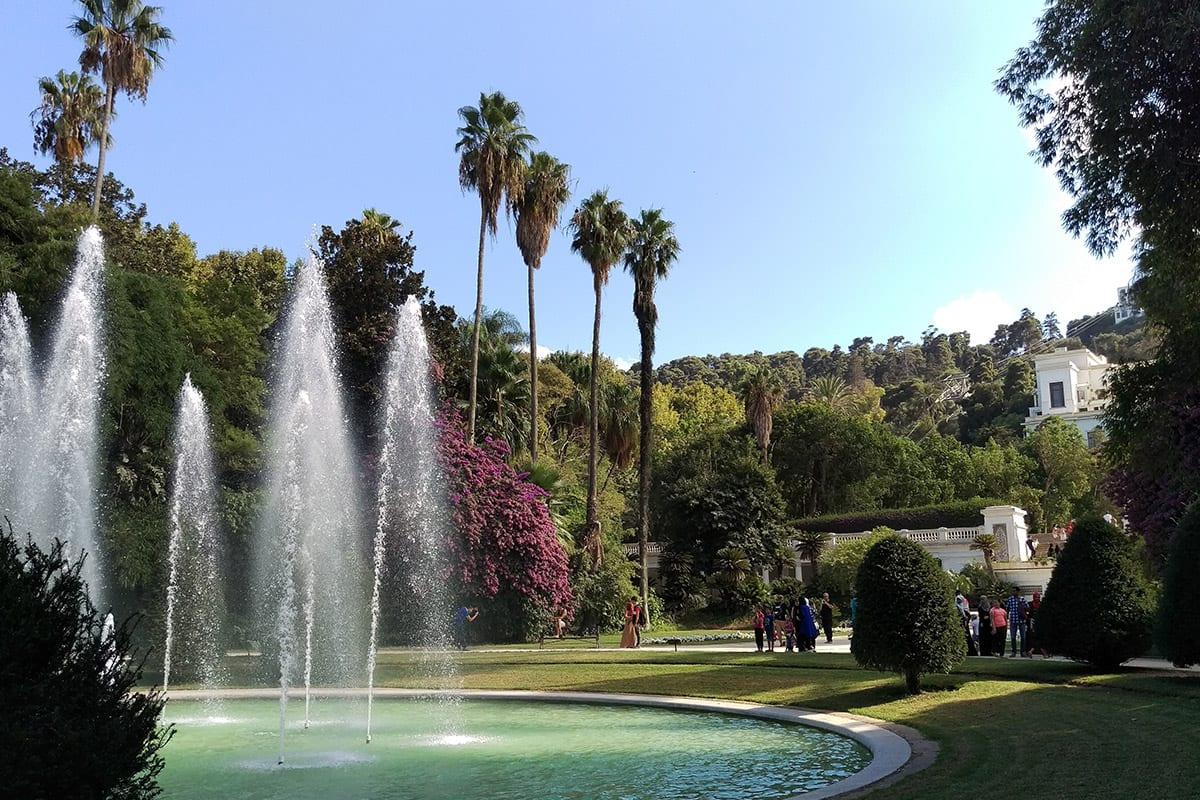 Image of the Botanical Garden of El Hamma in Algiers, Algeria