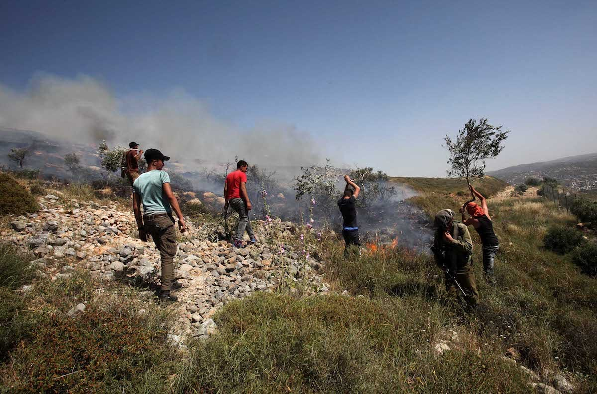 A Palestinian agricultural land was set on fire by a group of Jewish settlers in Burin district of Nablus, West Bank on May 10, 2017 [Nedal Eshtayah/Anadolu Agency]