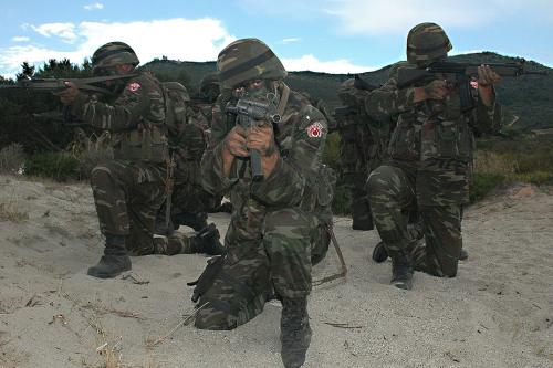 Turkish troops [US Navy]